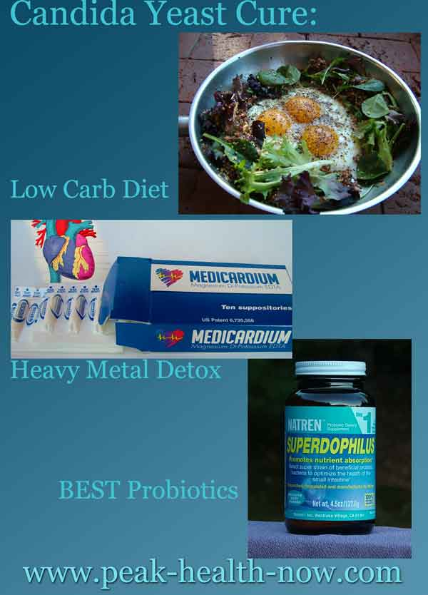 Candida yeast cure protocol