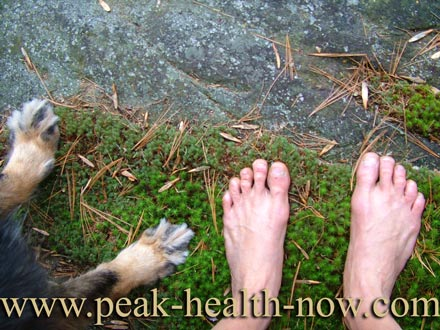 Barefooting tips - lovely way to spend time with your dog!