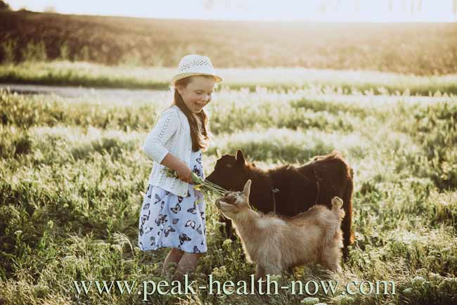 Acquired immunity - children benefit by being around animals