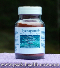 Pycnogenol® 100% pure French Maritime Pine Bark extract powder